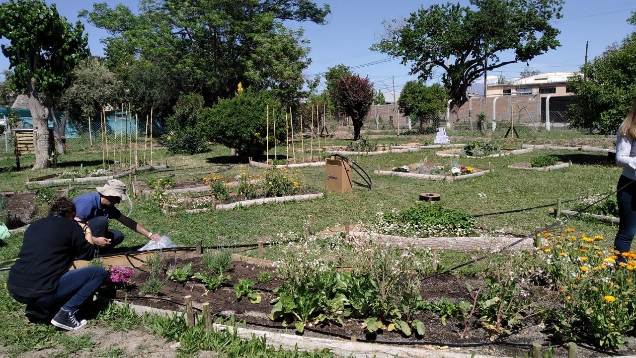 Irrigación trabaja junto a Guaymallén por un ambiente sano