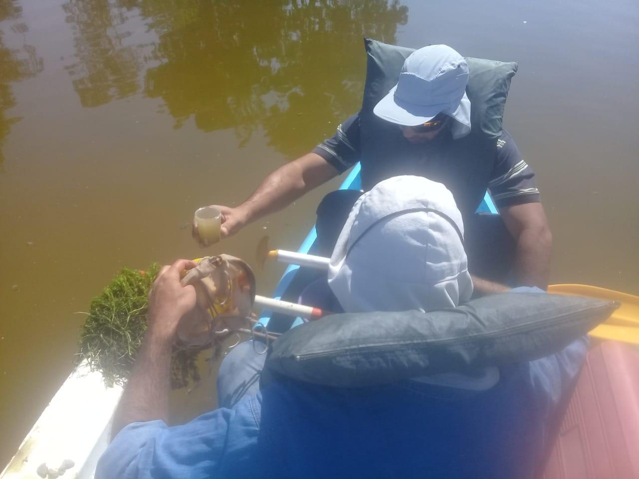 Laguna El Viborón: los primeros análisis de Irrigación arrojan que no hay agroquímicos y ahora estudia las algas