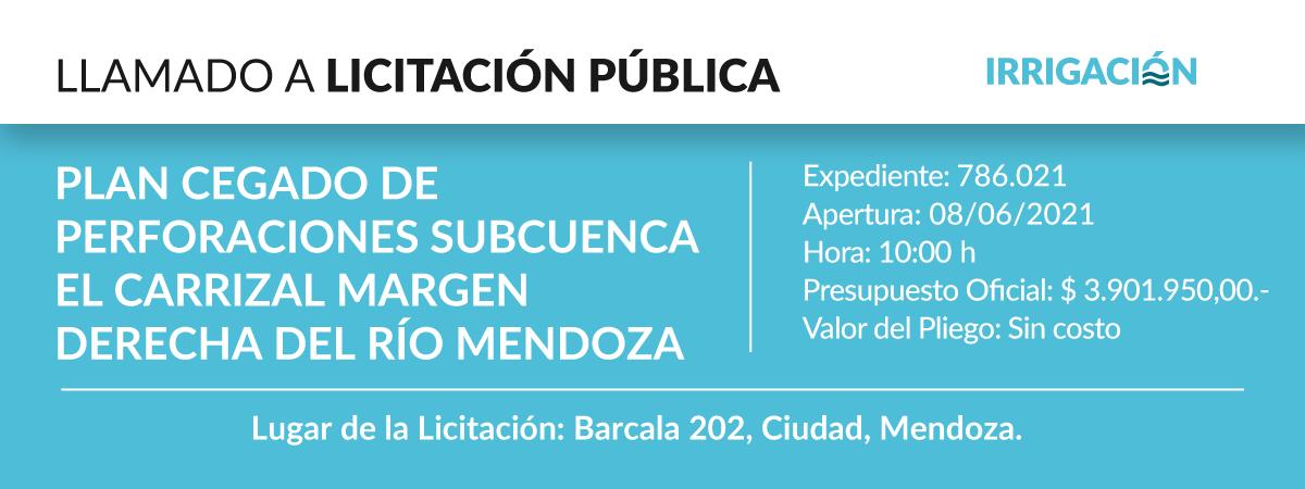 Plan Cegado de Perforaciones Subcuenca El Carrizal Margen Derecha del Río Mendoza