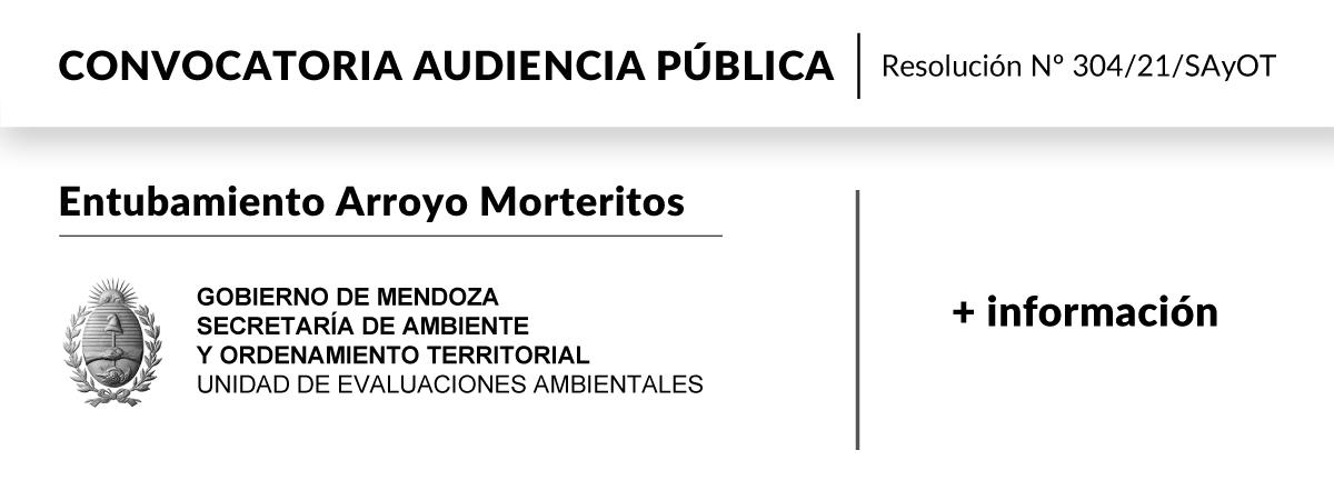 Audiencia Pública Entubamiento Arroyo Morteritos