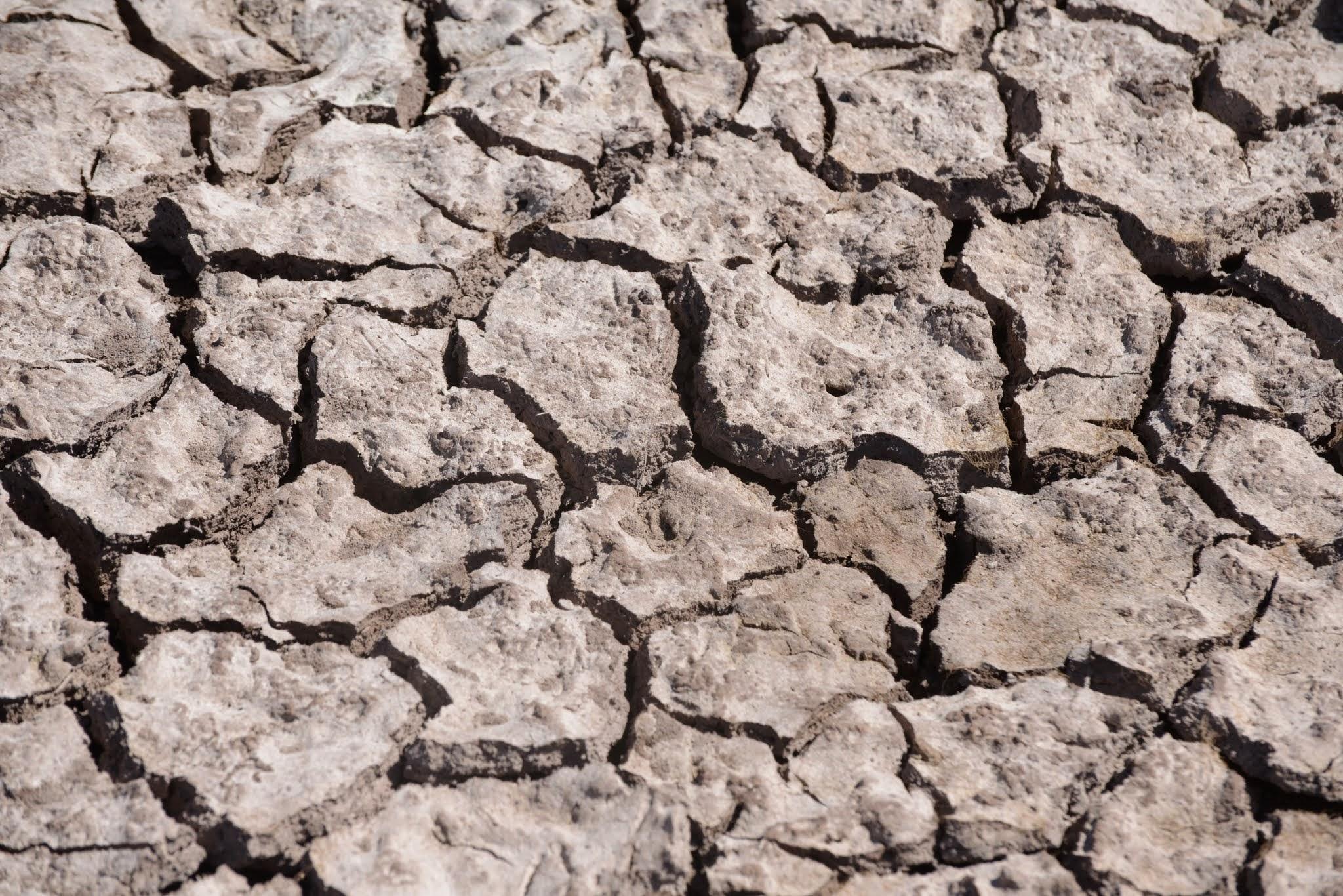 Cambio climático: alerta roja para la humanidad